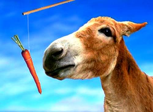 ослик и морковка